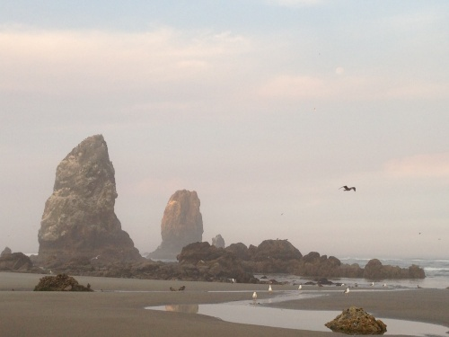 cannon beach moonset