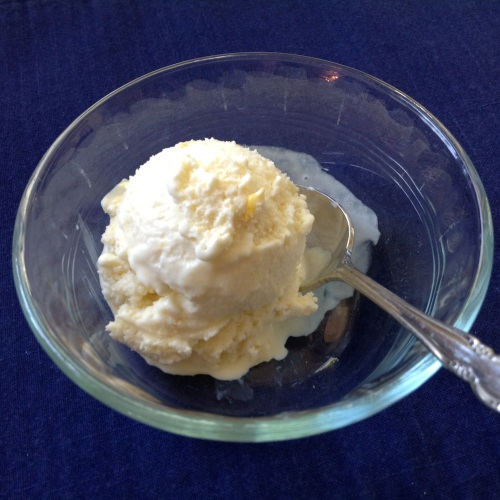 pdxknitterati plum bourbon jam ice cream
