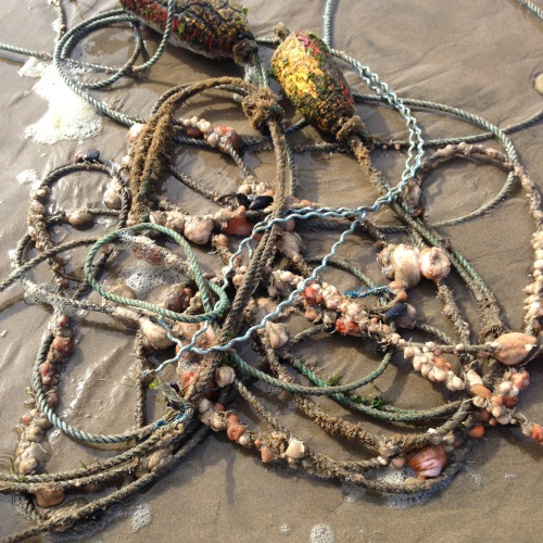 rope and sea creatures