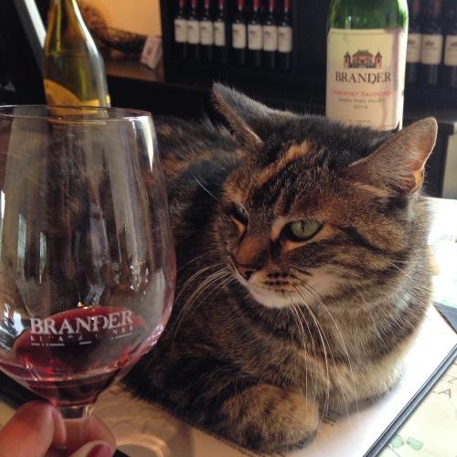 Millie at Brander Winery