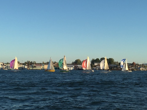 spinnakers on the columbia