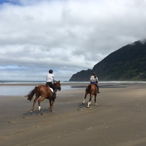 horses passing by