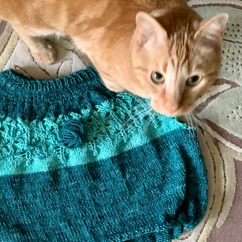 Love Note DK sweater and cat