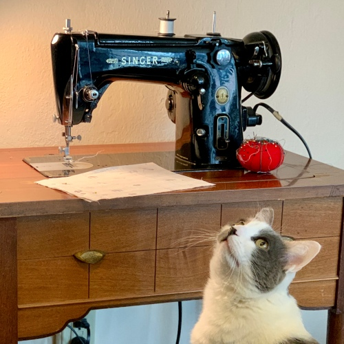 Singer sewing machine and cat