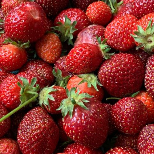 Hood strawberries